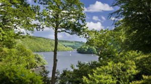 River Dart from Greenway